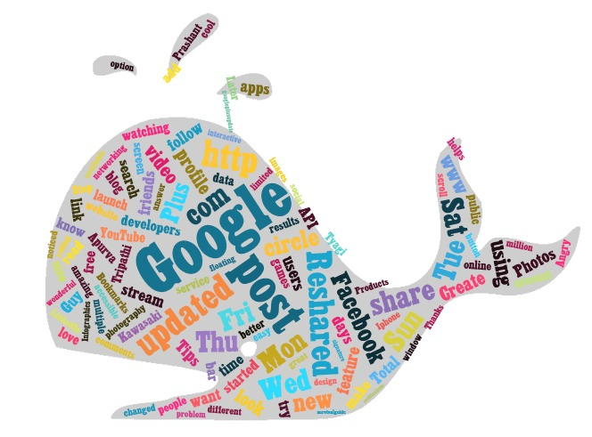 dolphin tag cloud