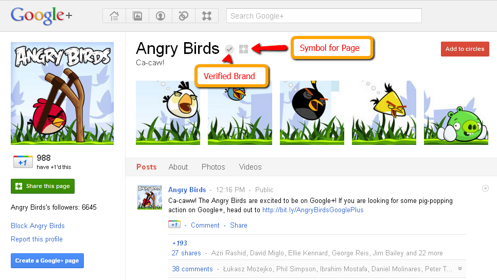 angry_birds_google_plus_page