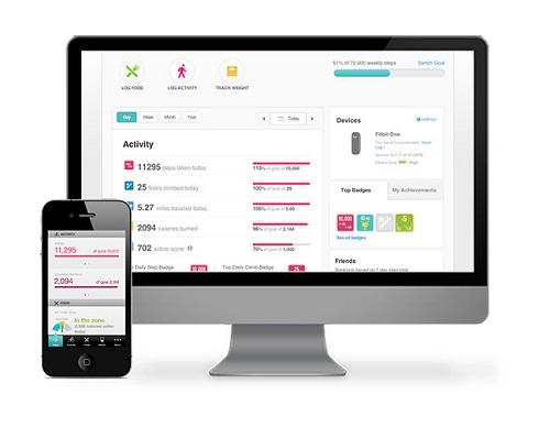 fitbit flex review   fitbit flex discount